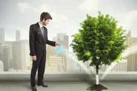 La forêt, un investissement rentable